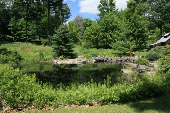 Walpole, Nueva Hampshire: Pond