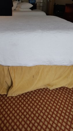 Hilton Garden Inn Nashville/Vanderbilt : The bed skirt looked as if it had tire tracks on it. Wish I had taken more pics but was 2 DEJECT