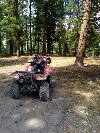 Okanagan ATV Tours : photo2.jpg