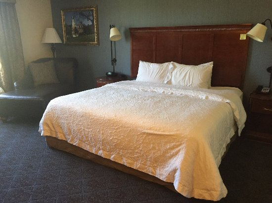Fruitland, MD: This bed was so comfortable with the leather lounge chair!