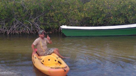 Mangrove Information Center Kayak & Snorkel Excursions: Lucky Luke