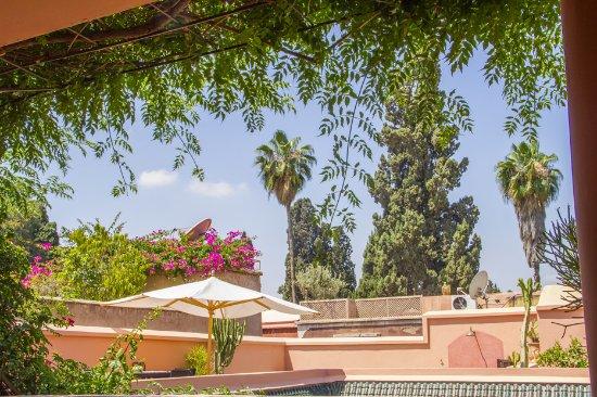 Riad Majala: la terrasse et son environnement