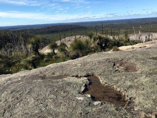 Mount Chudalup