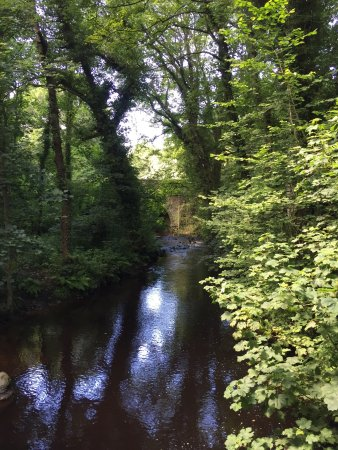 Rivelin Valley Nature Trail 사진