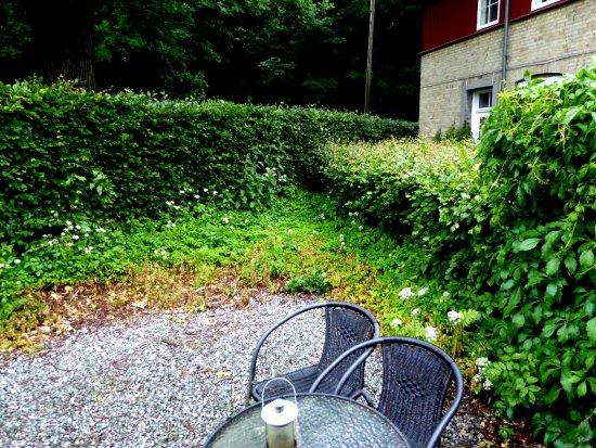 Danhostel Aarhus: jardinet attenant à la chambre
