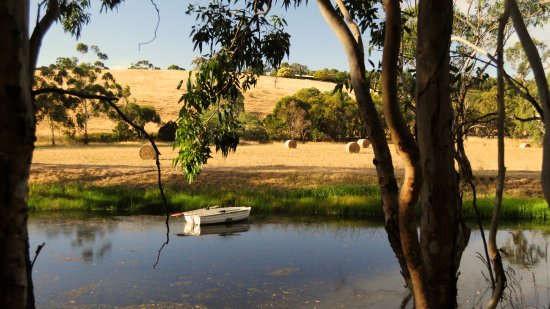 Willunga, Australia: View over the dam in front of the cellar door