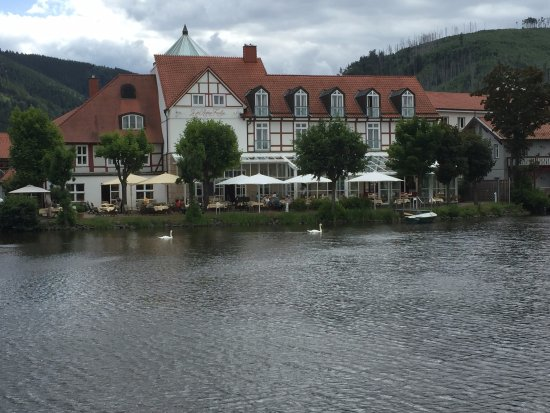 Ilsenburg, Alemania: Cosy restaurant at the edge of the water.