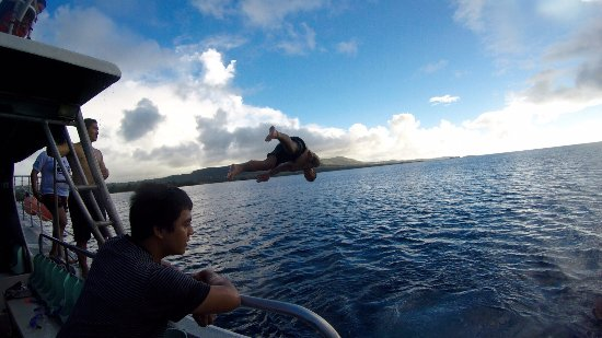 Piti, Mariana Islands: I went on a Dolphin watch, and experience something great! I'm not a fan about the open Ocean bu