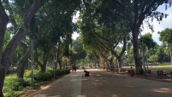 Gan Meir Park: 20160623_155906_large.jpg