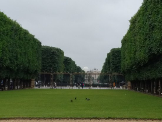 le jardin de luxembourg photo de jardin du luxembourg paris tripadvisor. Black Bedroom Furniture Sets. Home Design Ideas