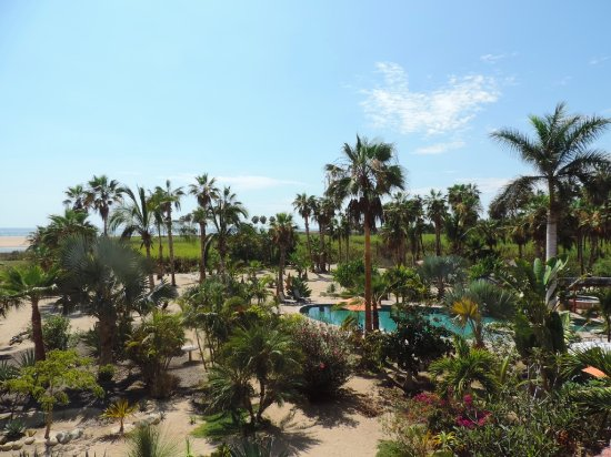 Posada La Poza : View from the deck
