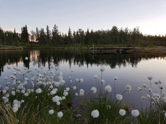 Liatoppen Fjellpark