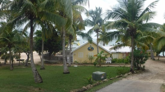 Bluff House Beach Resort & Marina: Tranquil Turtle Bar and Grill