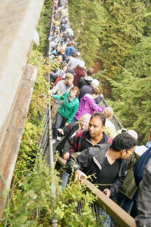 Nord-Vancouver, Canada: Het was druk op de Capilano Brug maar zeker de moeite waard om dit te gaan doen.