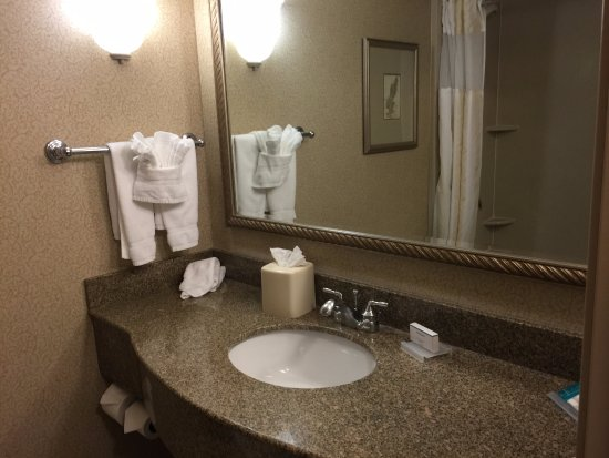 Hilton Garden Inn Boise/Eagle: Bathroom