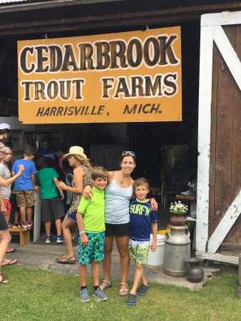Cedarbrook Trout Farm