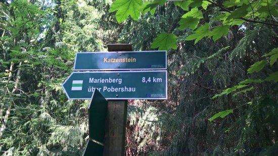 Pobershau, Germany: Sehr gut ausgeschliderte Wanderwege