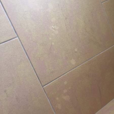 Degli Haethey Hotel : pavimento macchiato