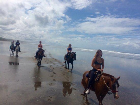 Esterillos Este, Costa Rica: Paradise beach rides!