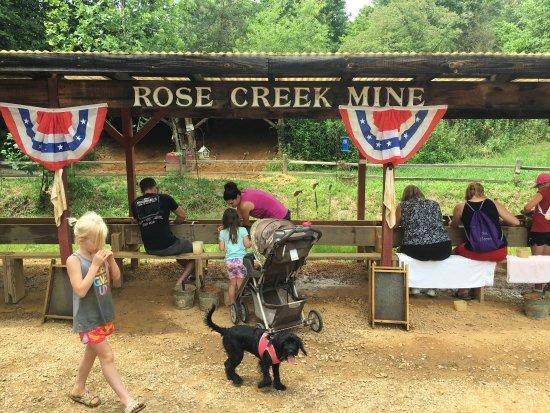 Rose Creek Campground & Cabins: photo0.jpg