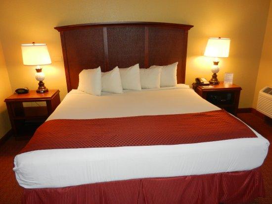 de0aa2c2ba04c ROSEN INN - Now €57 (Was €̶8̶1̶) - UPDATED 2019 Hotel Reviews   Price  Comparison (Orlando