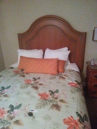 キャンディ ケーン イン ホテル Picture