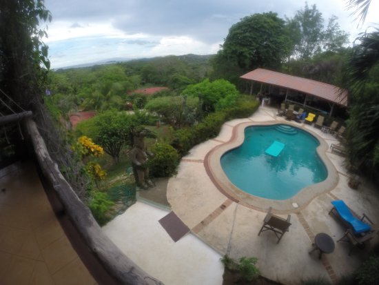 Rancho Armadillo Estate: Overlooking the Pool Area From The Library lounging deck