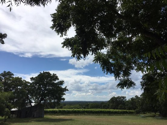 Hye, TX: View from Back Deck of Tasting Room