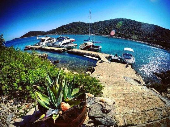 Kaprije, Croacia: Ulaz u restoran