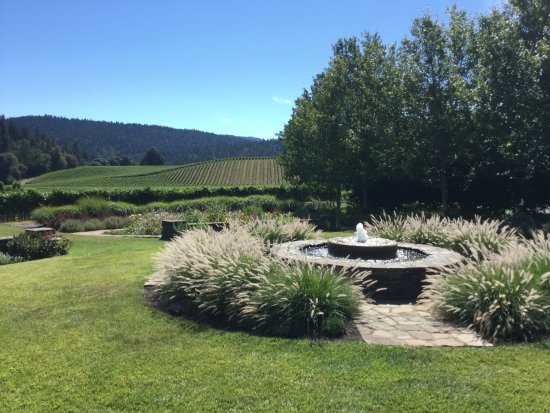 Goldeneye Winery: grounds and garden