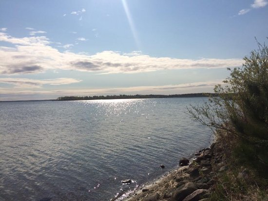 Cass Lake, MN: The Shoreline