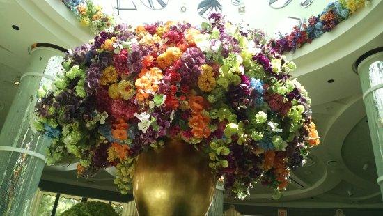 Amazing Flower Arrangements Photos Life Style By