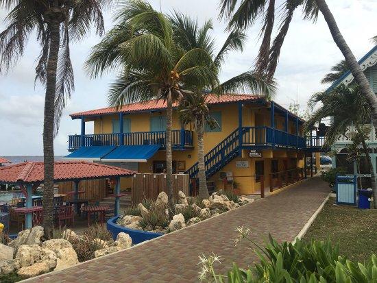 Divi Flamingo Beach Resort and Casino : photo0.jpg