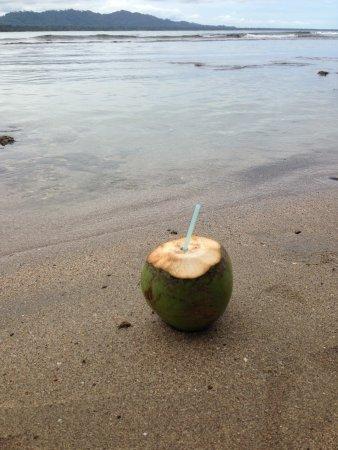 Pipa on Puerto Viejo Beach