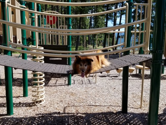 Libby Dam Visitor Center: The playground near the boat ramp