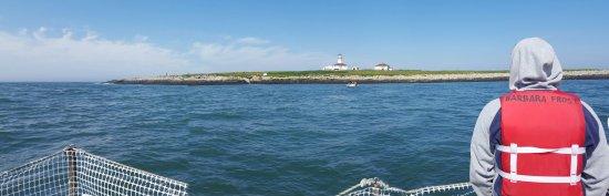 Cutler, Maine: 20160705_092921_large.jpg