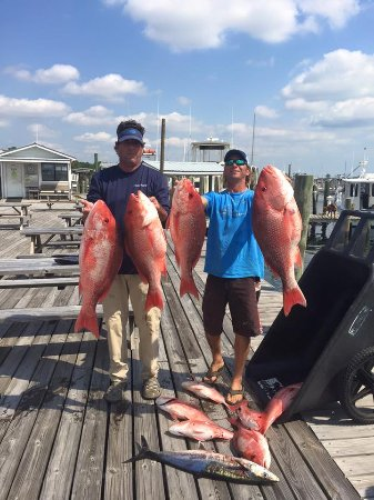 Six Shooter Charters