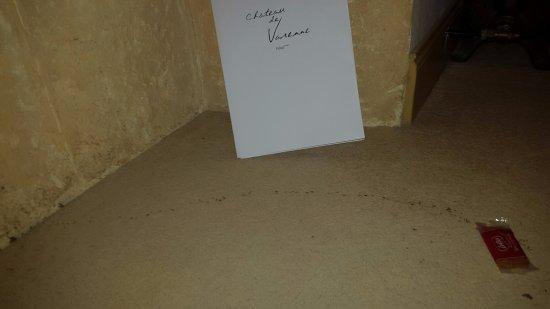 Sauveterre, França: gesloten koekje per ongeluk laten vallen, half uur later... Mieren zaten op bed, kast, tafel, vl