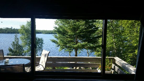 Nor'Wester Lodge and Canoe Outfitters : Our view from inside the cabin towards the lake.