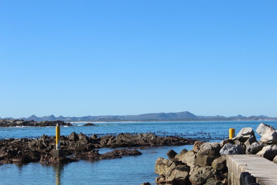 Kleinbaai, Sør-Afrika: Only a 15 minute ride out into this bay to see the sharks! Indian Ocean is warmer as well.