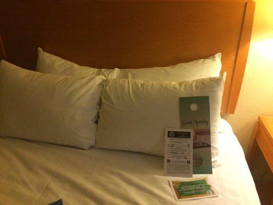 フロリダ ホテル アンド カンファレンス センター Picture