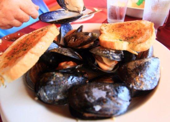 Deer Isle, Μέιν: GIANT mussels