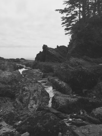 Port Renfrew, كندا: A great day spent at Botany Bay and Botanical beach. Hike down is fairly easy and having a walki