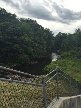 Laurel Hill State Park: photo1.jpg