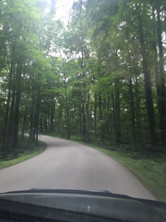 Laurel Hill State Park: photo3.jpg
