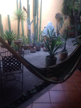 Bed & Breakfast at the Oaxaca Learning Center: photo0.jpg