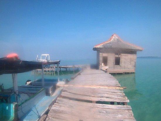Semak Daun Island