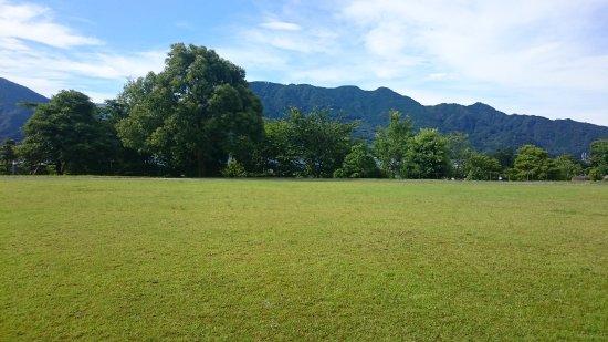 Owase, Japón: 熊野古道センターの芝生。木の奥は海です。