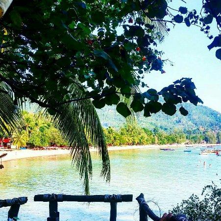 Koh Tao Cabana: 2016-07-04 17_large.jpg