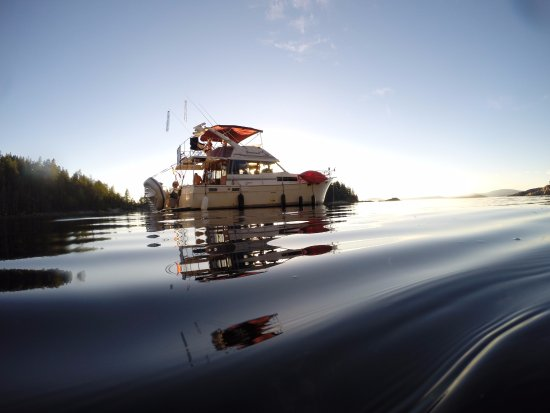 Lund, แคนาดา: Swimming in Desolation Sound-September